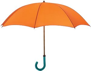 personal loan umbrella