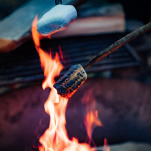 Two marshmellows roasting in a fire.