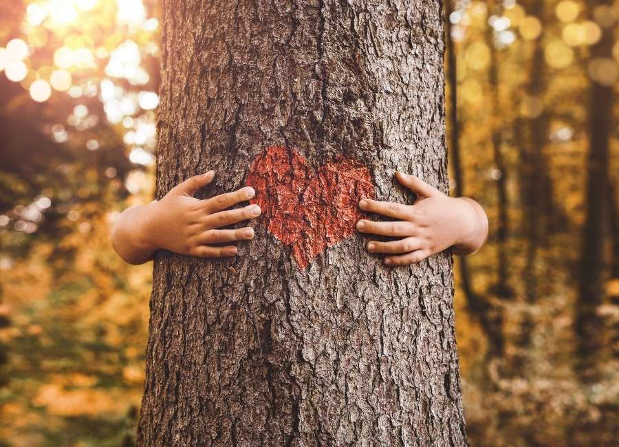 Child hugging a tree