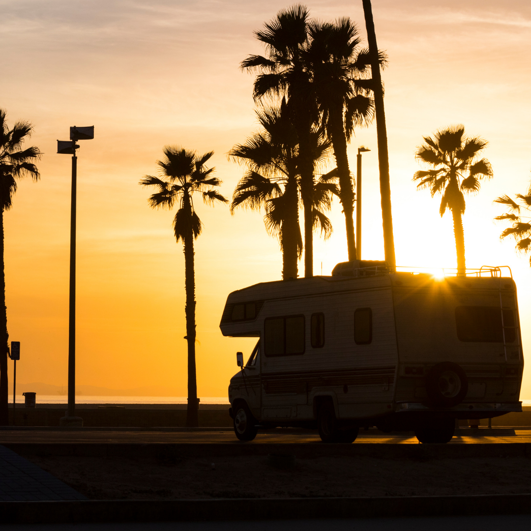 Sunset with palm trees and RV