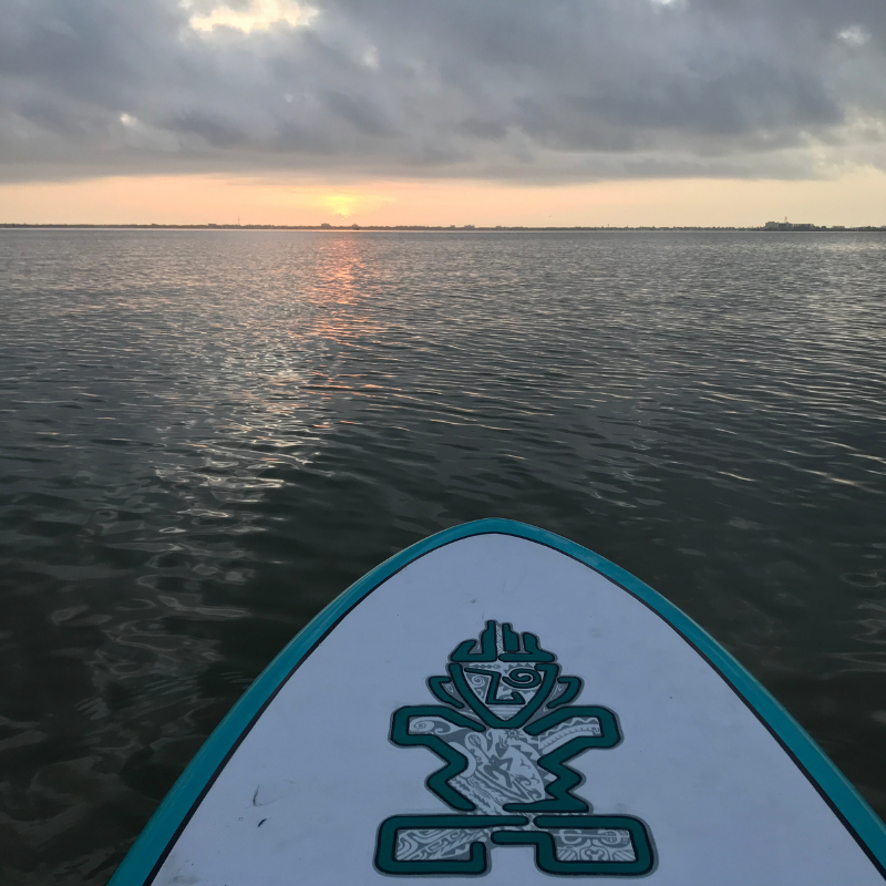 Su rise from a paddle board with tiki print